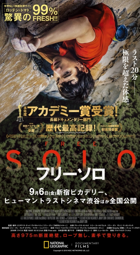 Free solo_poster