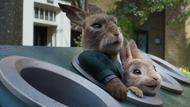 Peter Rabbit 2_002